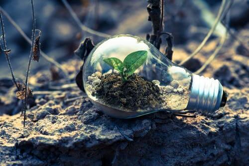 reduce-carbon-emissions